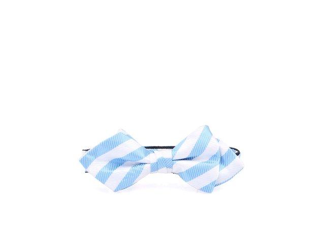 Modro-bílý hedvábný motýlek Selected Ernst
