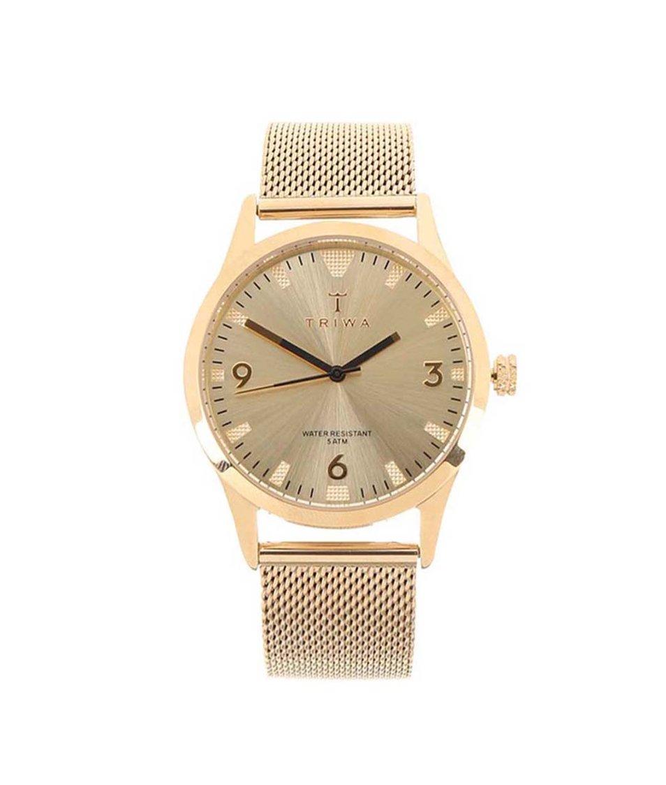 Set unisex hodinek v zlaté barvě a koženého řemínku TRIWA Sort of Black