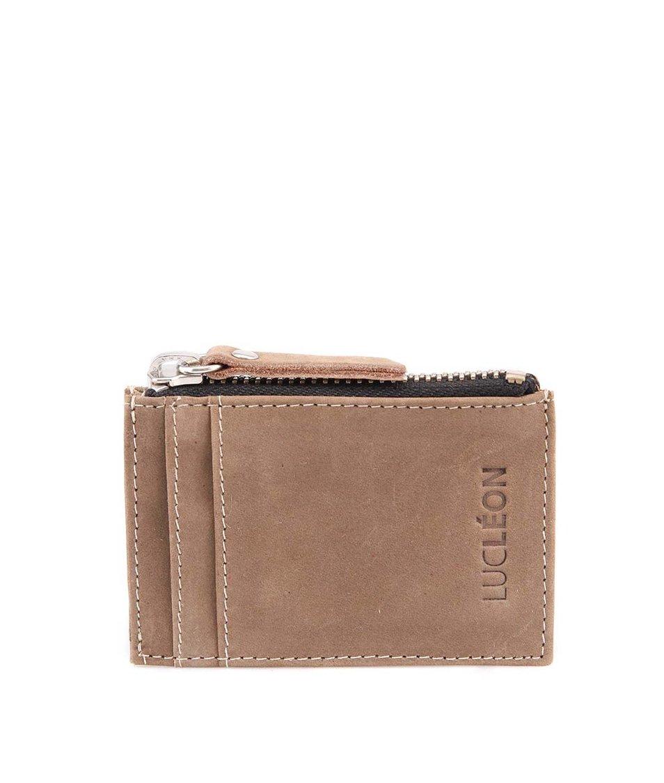 Hnědý kožený vizitkář s kapsou na mince Lucleon