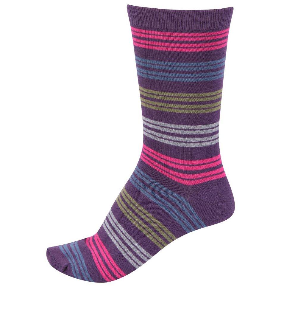 Fialové pánské bambusové ponožky s barevnými pruhy Braintree Kirby
