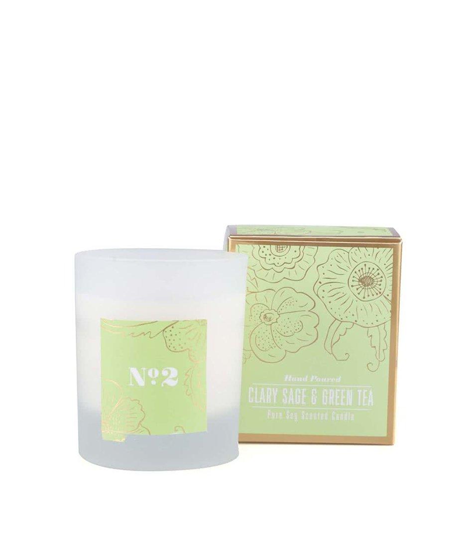 Sójová svíčka s vůní šalvěje a zeleného čaje Rex