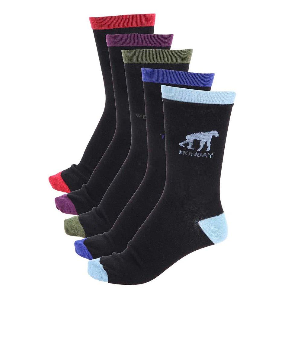 Balení pěti párů pánských ponožek Signature Evolution