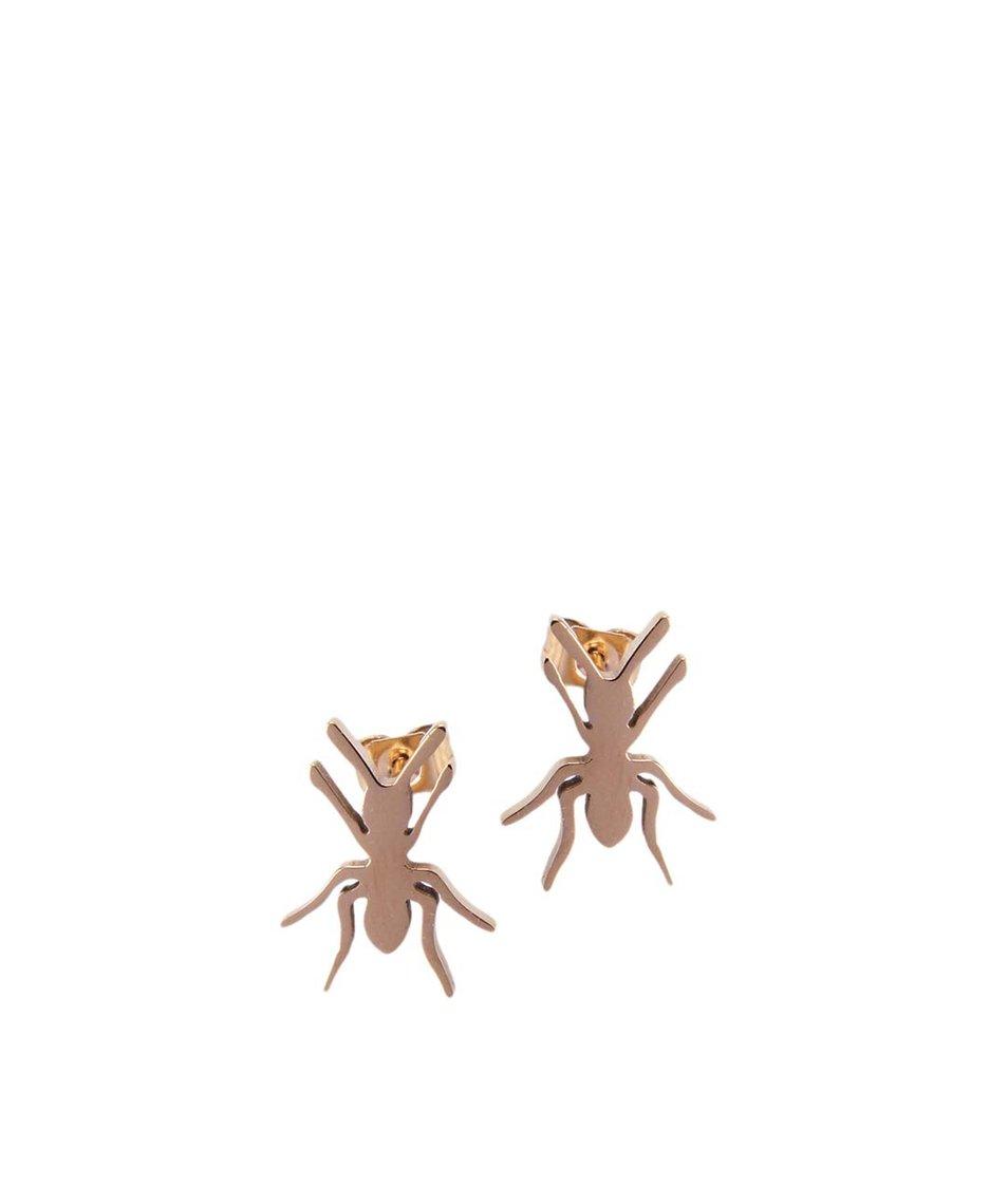 Pozlacené náušnice ve tvaru mravence Lady Muck
