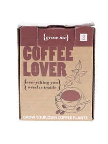 Set creștere arbore de cafea Gift Republic Grow it