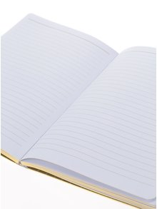 Zeleno-bílý linkovaný zápisník s motivem pírek Galison A5