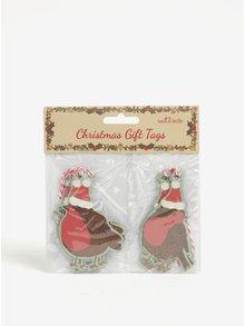 Sada deseti ozdob ve tvaru ptáků v hnědé barvě Sass & Belle Christmas Robin