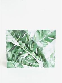 Krémovo-zelený obraz s motivem dlouhých listů SIFCON