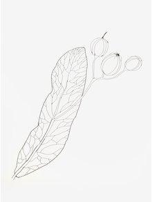 Poster creativ cu print frunza cu muguri - Lipa A4
