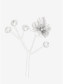 Poster creativ cu print floral - Lípa A4