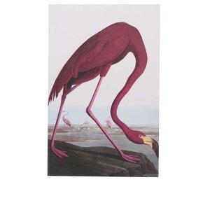 Caiet cu model flamingo Magpie Birds de la Zoot.ro