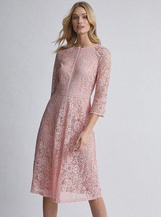 Světle růžové krajkové šaty Dorothy Perkins Tall