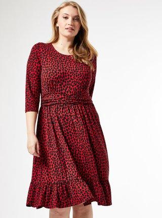 Červené šaty s leopardím vzorom Dorothy Perkins Curve