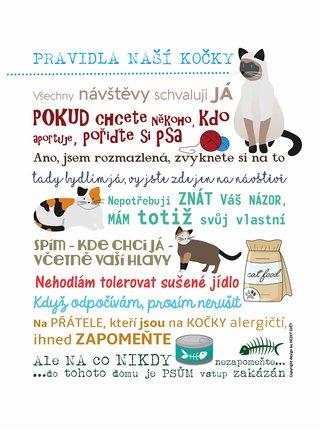 Bílý plakát  HEZKÝ SVĚT Pravidla naší kočky