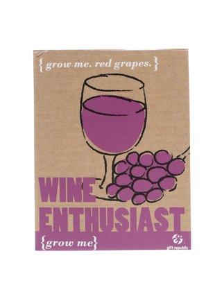 Súprava na vypestovanie vína Gift Republic Grow me