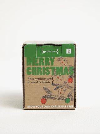 Set pro vypěstování vánočního stromku Gift Republic Grow me