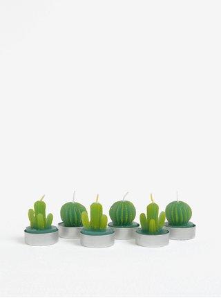 Set de sase lumanarele verzi in forma de cactus SIFCON