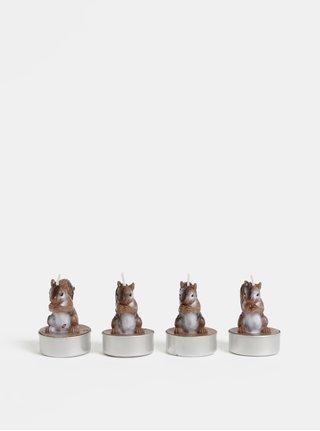 Balenie štyroch hnedých čajových sviečok v tvare veveričky Kaemingk