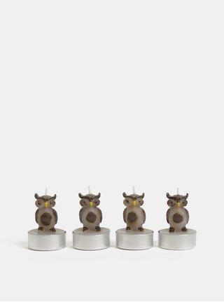Balenie štyroch hnedých čajových sviečok v tvare sovy Kaemingk