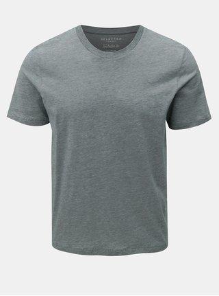 Zelené žíhané tričko s krátkým rukávem Selected Homme Perfect