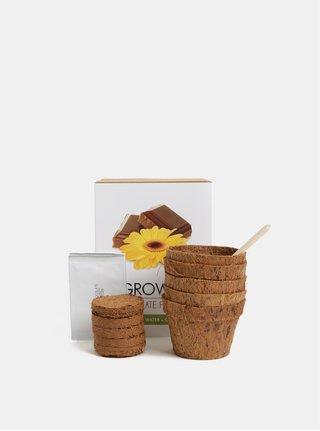 Sada pro vypěstování květů čokolády Gift Republic Chocolate Flowers