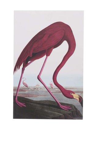 Bílý zápisník s motivem plameňáka Magpie Birds