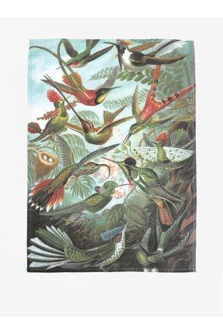 Prosop de bucatarie verde cu print pasari Magpie Haeckel