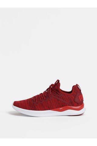 Červené žíhané pánské tenisky Puma Ignite Flash evoKnit
