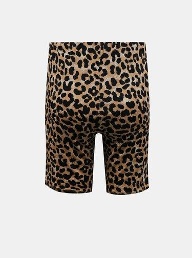 Hnedé krátke legíny s leopardím vzorom Miss Selfridge