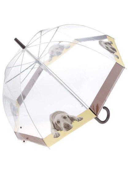 Průhledný deštník se psem Lindy Lou