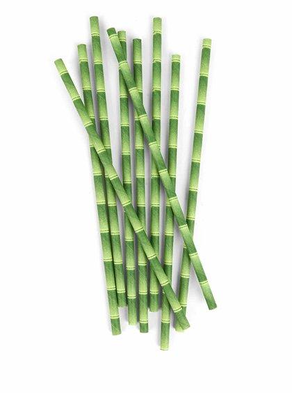 Zelená ekologická brčka s potiskem bambusu Kikkerland