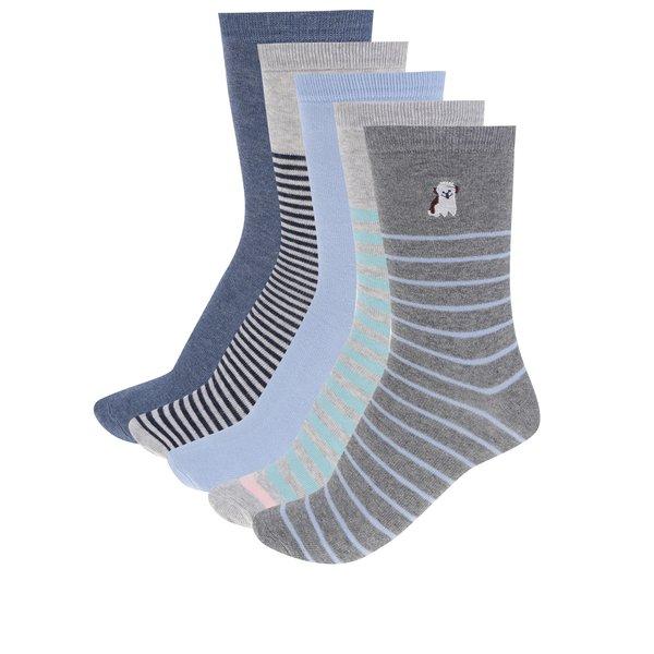 Set de 5 perechi de șosete albastru & gri M&Co cu model de la M&Co in categoria Dresuri si șosete
