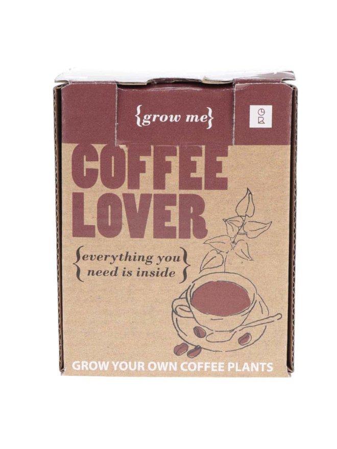 Set crestere arbore de cafea Gift Republic Grow it