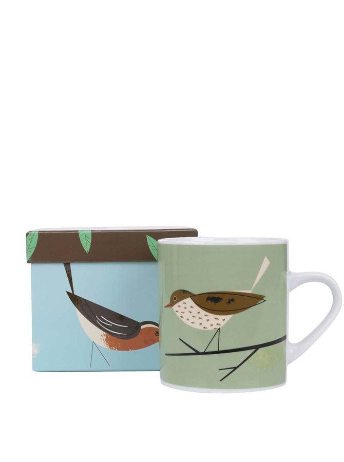 Zelený hrnek s ptáčkem Magpie Thrush