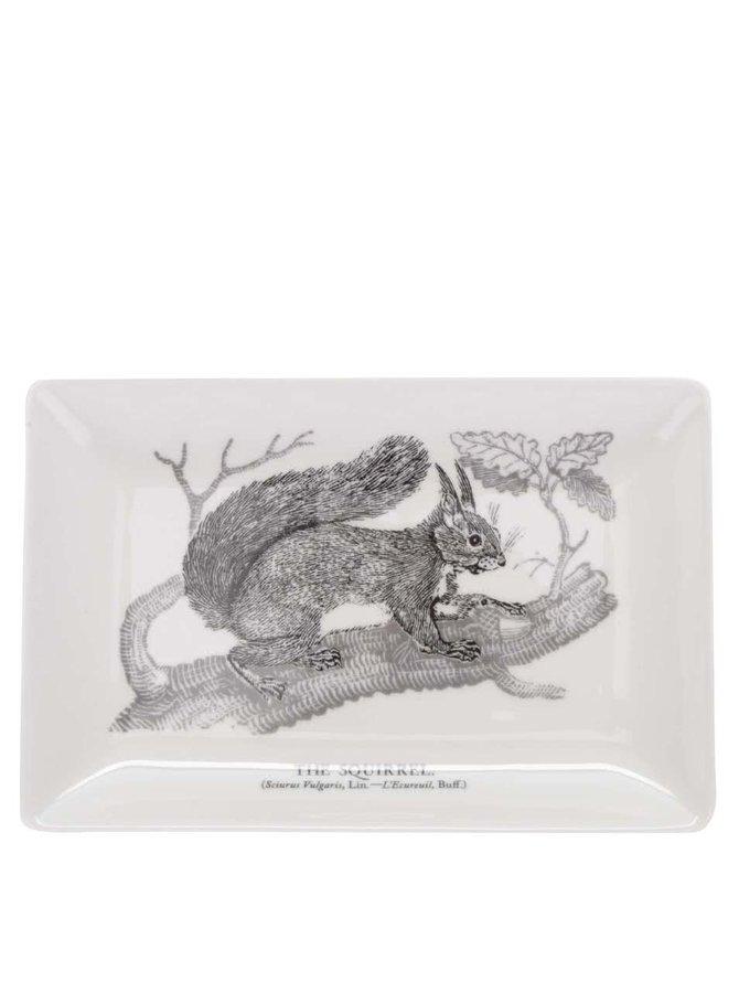 Krémová porcelánová miska s potiskem veverky Magpie Bewick