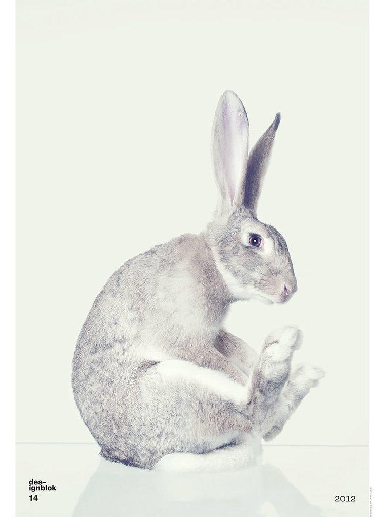 Plakát Designblok Zajíc