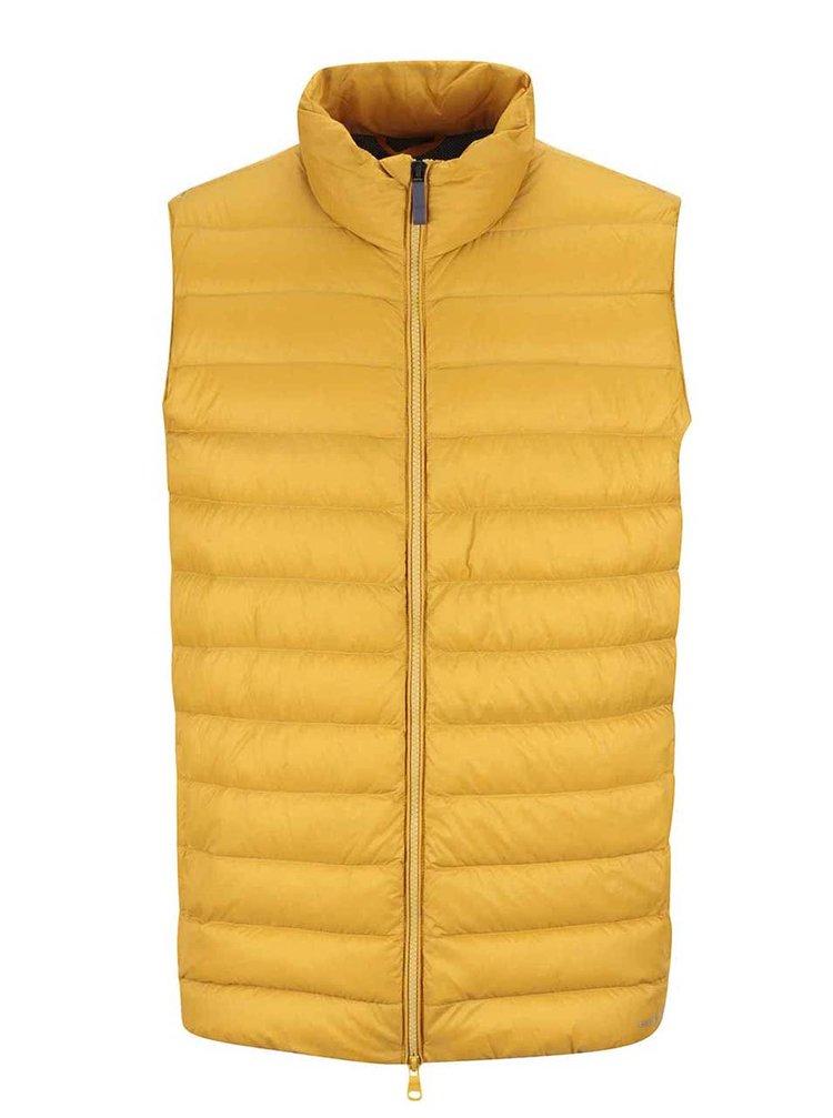 Žlutá pánská prošívaná vesta Geox Down
