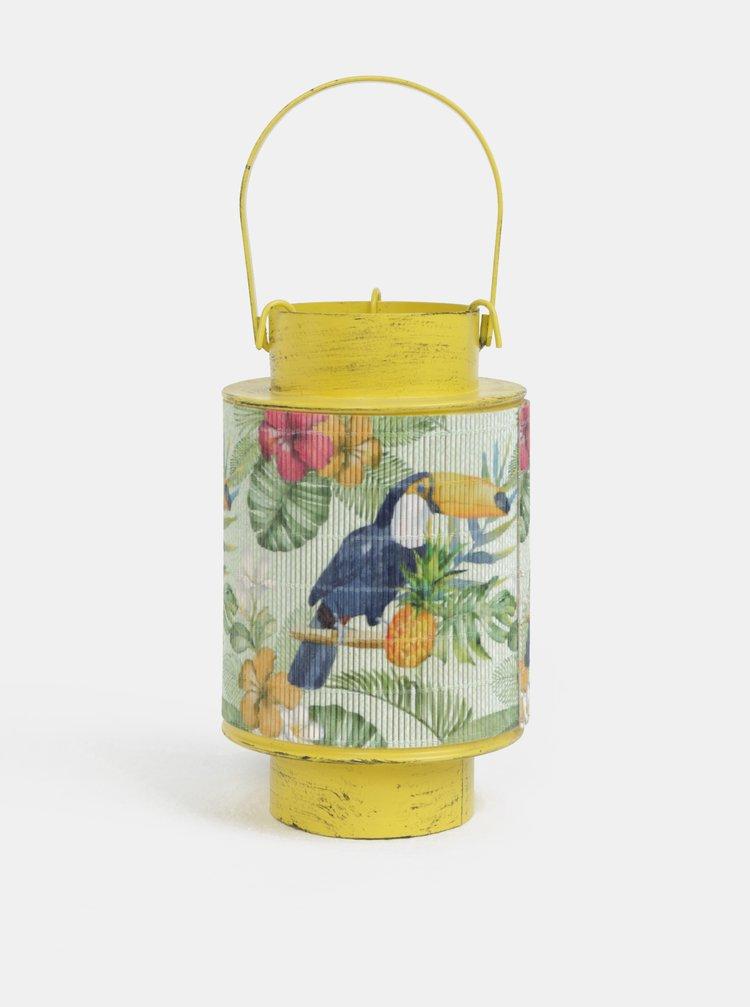 Žlutá malá kovová lucerna s bambusem a motivem tukana Kaemingk