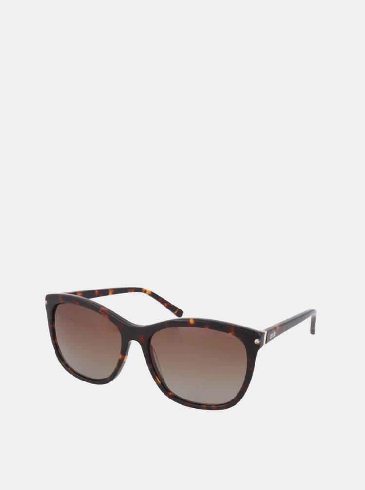 Hnedé dámske slnečné okuliare Crullé