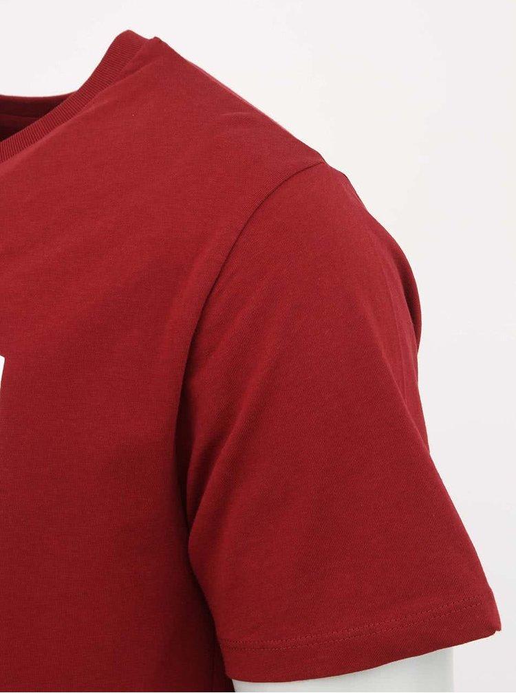 Vínové pánské tričko ZOOT Originál Nejsu pražák