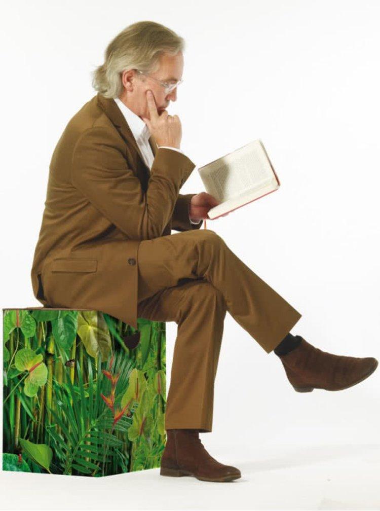 """Scaun pliabil Remember Jungle cu """"Un strop de natură"""""""