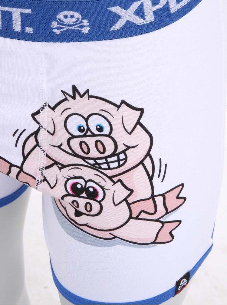 Modro-biele pánske boxerky s potlačou Xplicit Porky