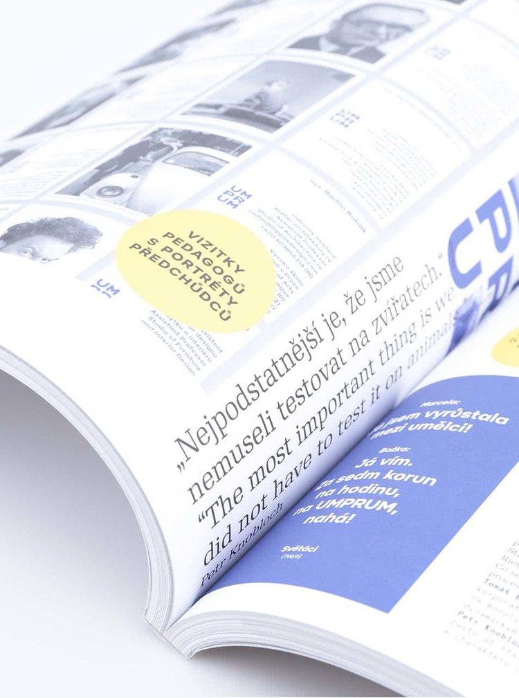Ročenka českého designu Designblok 2013
