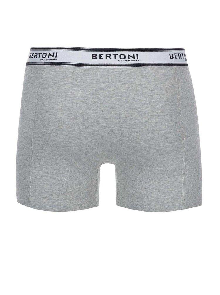 Sada dvou šedých boxerek Bertoni Birk