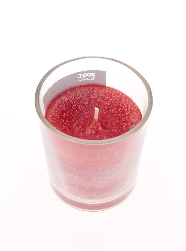 Vonná sviečka v skle ZOOT Buddies Brusinka
