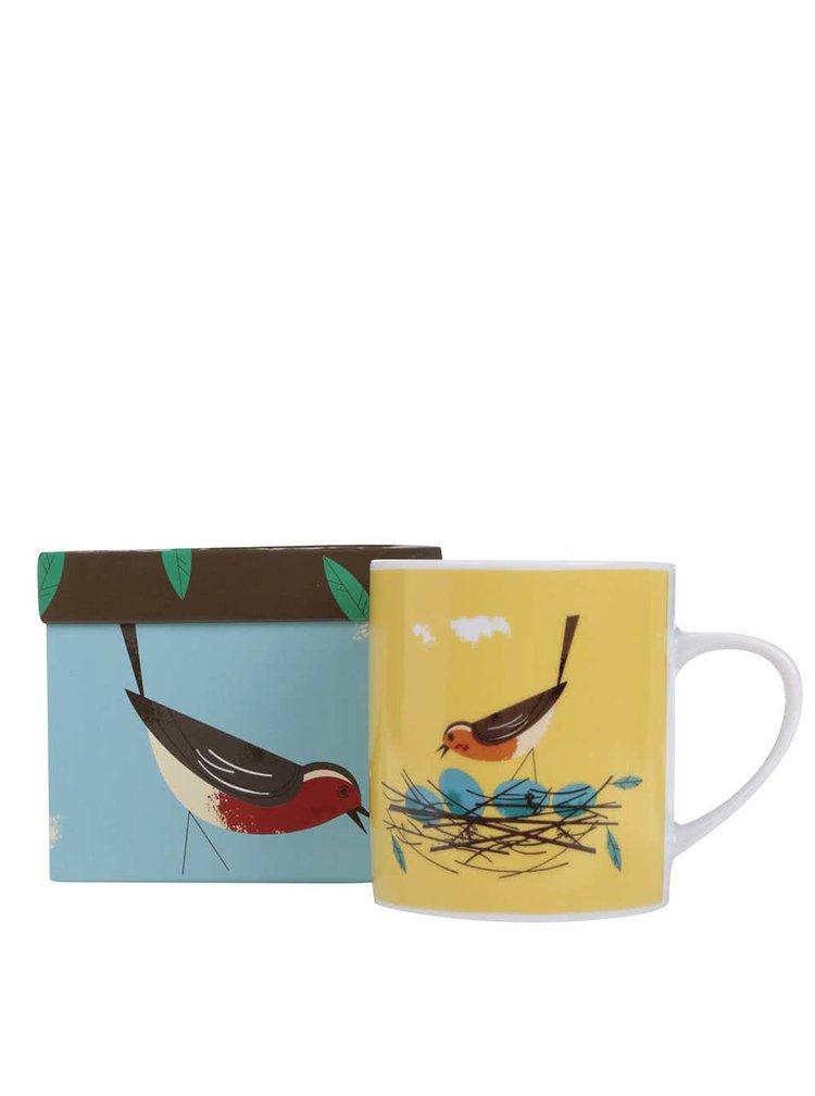 Cana Magpie Robin galbena, cu print