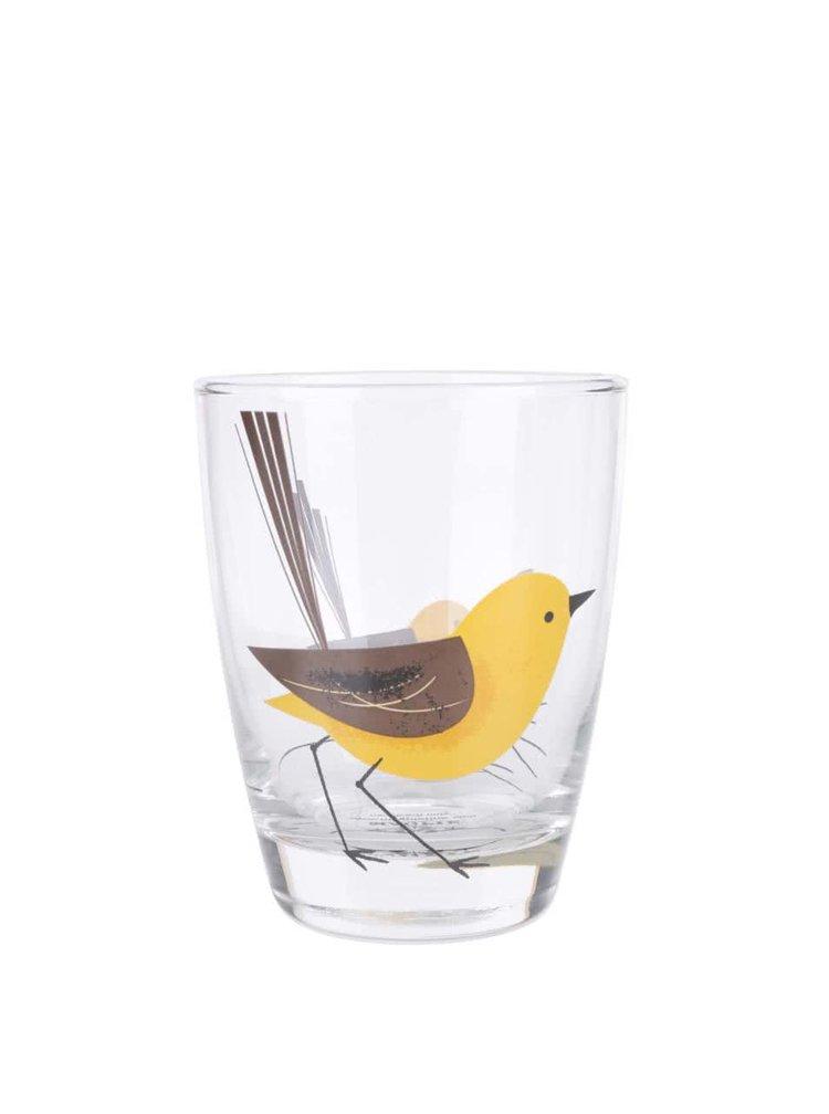Pohár s vtáčikom Magpie Wagtail