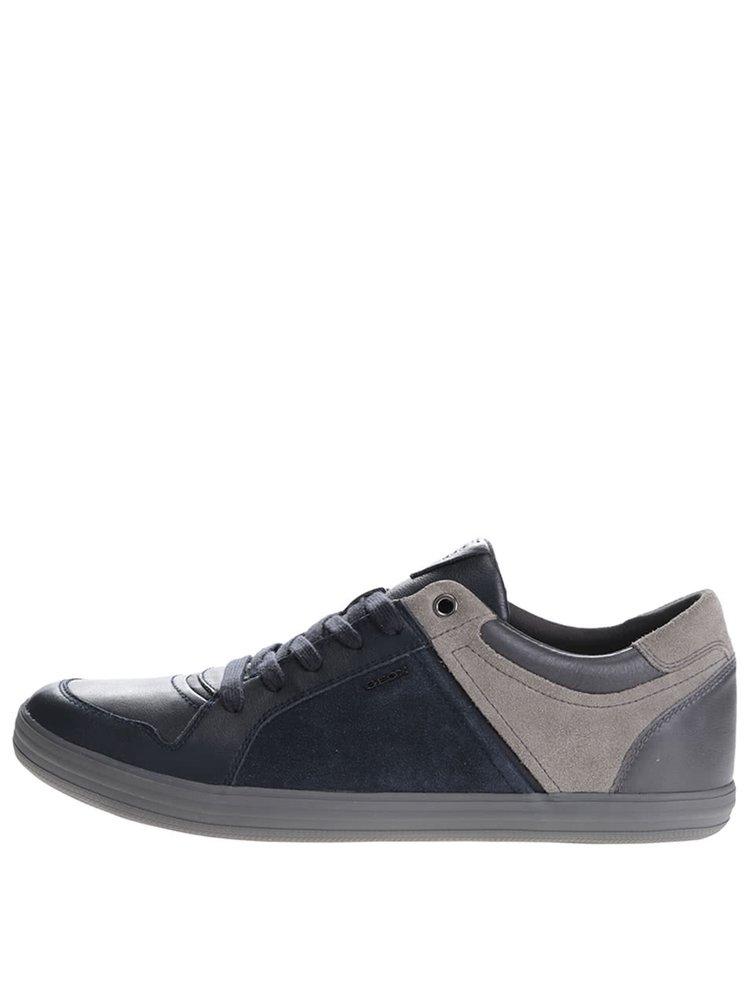 Sivo-modré pánske kožené tenisky Geox Box D