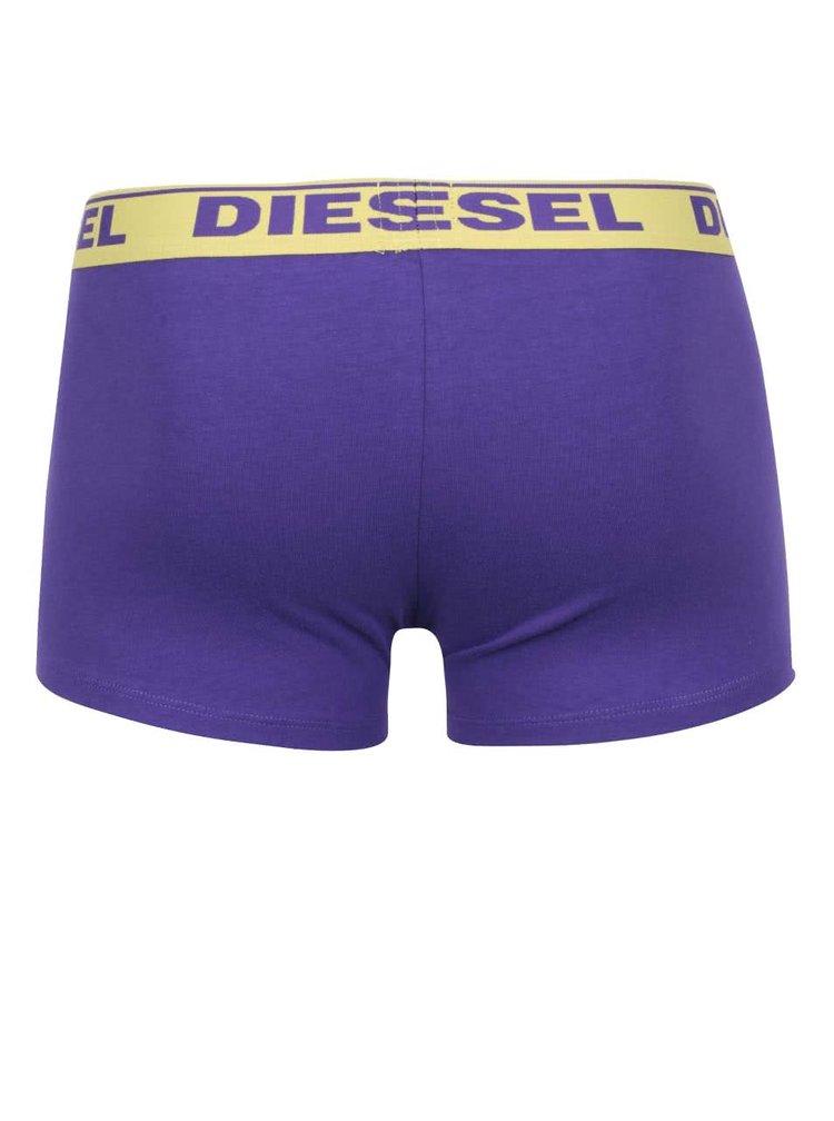Sada dvou boxerek v černé a fialové barvě Diesel