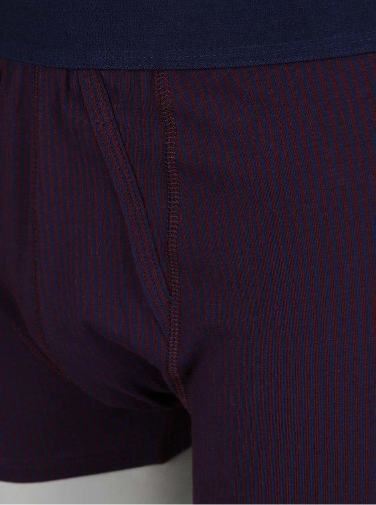 Sada tří boxerek modré, vínové a šedé barvě Burton Menswear London