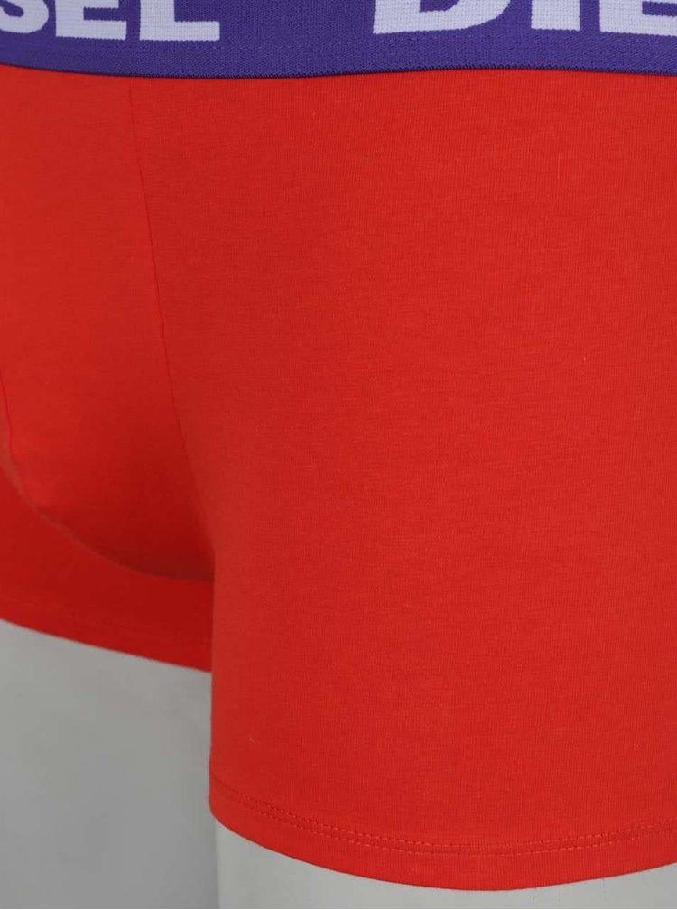 Sada dvou boxerek v červené a fialové barvě Diesel